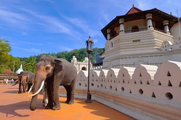 kandy - temple of tooth