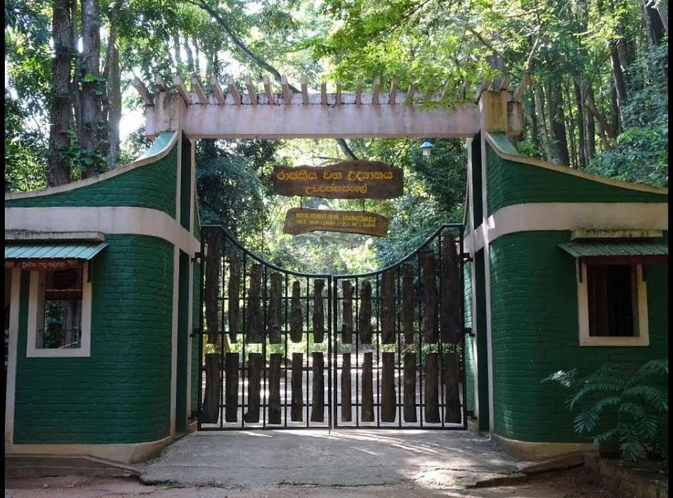kandy - udawattakele sanctuary