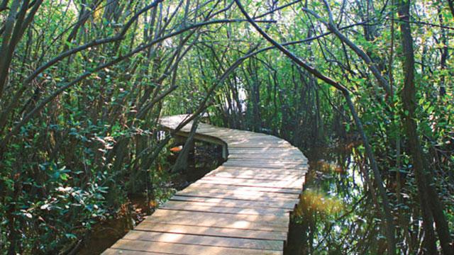 colombo beddagana wetland park