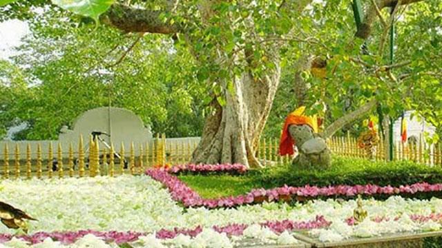 anuradhapuraya - jaya sri maha bodhi