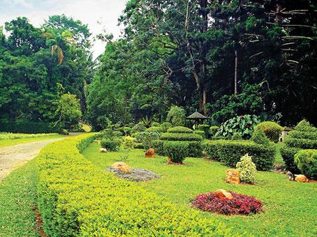 Gampaha - henarathgaoda botanical garden