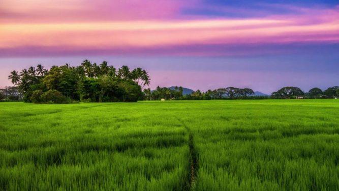 Nature of sri lanka